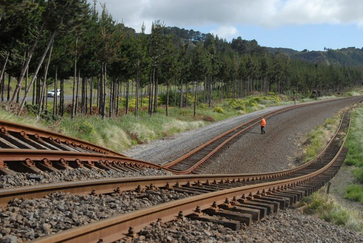 The Papatea Fault rupture as it crosses the Picton-Christchurch railway line north of Kaikoura in November 2016. Photo: Will Ries, GNS Science