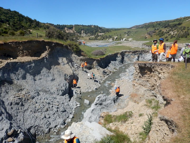 Geologists examining the complex tectonic environment at the toe of the Leader landslide. Here the stream was diverted by the landslide and has cut down through a river terrace creating a new geological exposure of a fault line. The 2016 fault rupture crosses the stream and offsets different rock layers.  This type of outcrop can yield information about past earthquakes.