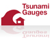 tsunami gauges icon