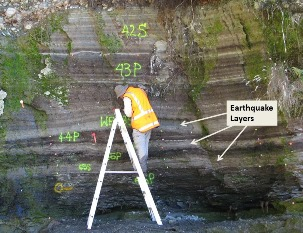 Alpine fault earthquake layers at Hokuri Creek