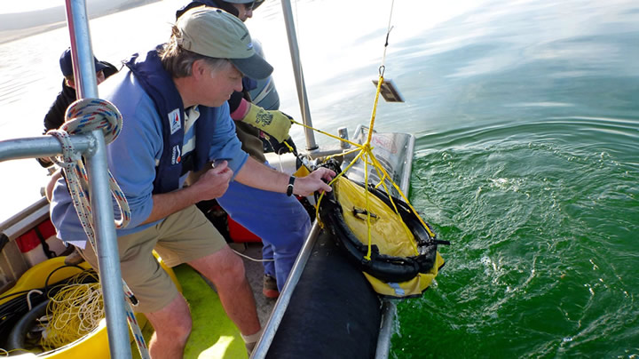 Dr Maurice Tivey, of Woods Hole Oceanographic Institution in the US, retreives one of the heat measuring devices from the bottom of Lake Rotomahana near Rotorua during the heat energy survey. Photo - Julian Thomson.