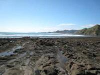 Kiritehere Beach near Kawhia. A great place for fossil hunting.