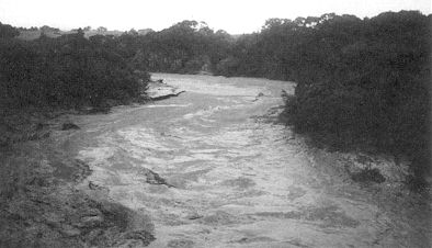 Figure 7. 25 September 1995 lahar near flow peak 9.00 am from a road bridge across Whangaehu River at Tirorangi Marae. From measurements afterwards, the upper lahar level was 4.6 m above normal river flow level. (C Barrett)