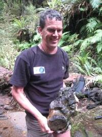 Just discovered! – marine reptile bones in a Hawkes Bay stream