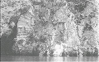 Figure 8: Photograph of the interior structure of a rhyolite dome, showing a radial pattern of cracks formed as the lava cooled. (Mason's Rock on the north shore of Lake Taupo)