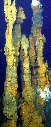 Inactive 5 metre high chimney spires with 'beehive'-like tops occur at the Brothers NW caldera site. These chimneys are coated in iron oxides (yellow) and bacteria (white)